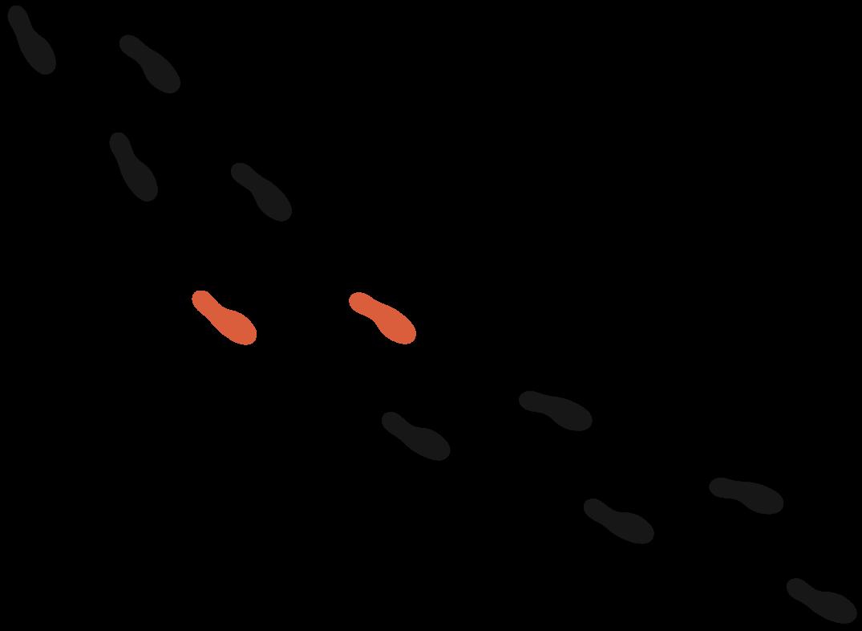 member-foot